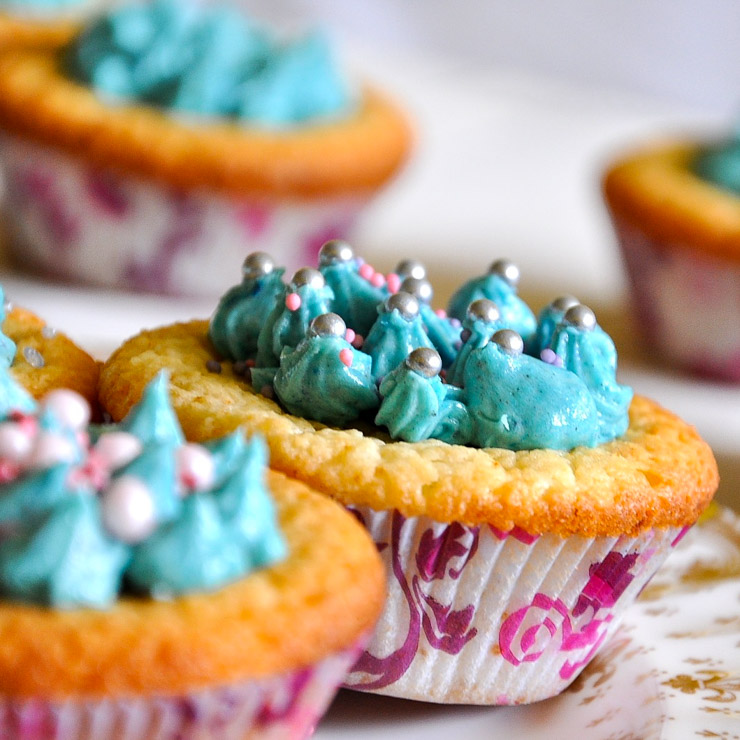 vegane Kokos-Cupcakes mit Schokolade - The Vegetarian Diaries