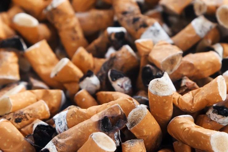 Sind Zigaretten vegan - The Vegetarian Diaries