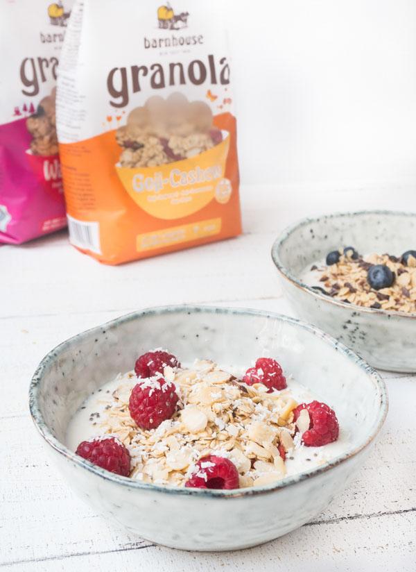 gesundes, veganes Frühstück mit Haferflocken und frischem Obst