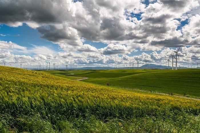 Nachhaltige Landwirtschaft - The Vegetarian Diaries
