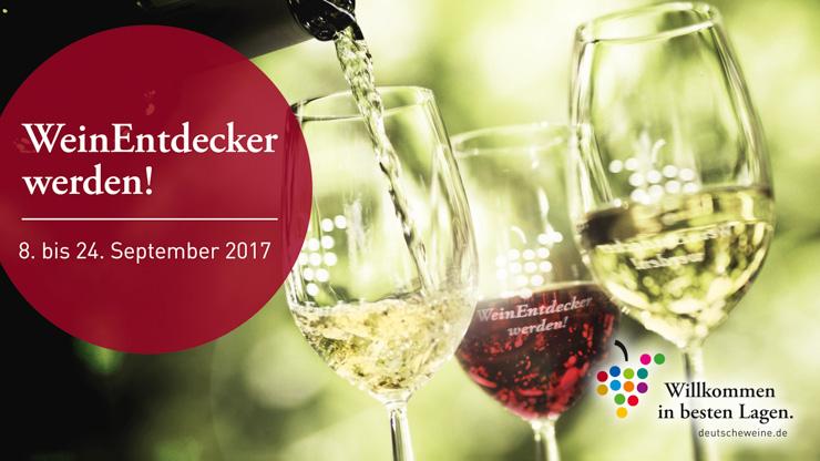 WeinEntdecker-Touren - Entdecken - The Vegetarian Diaries