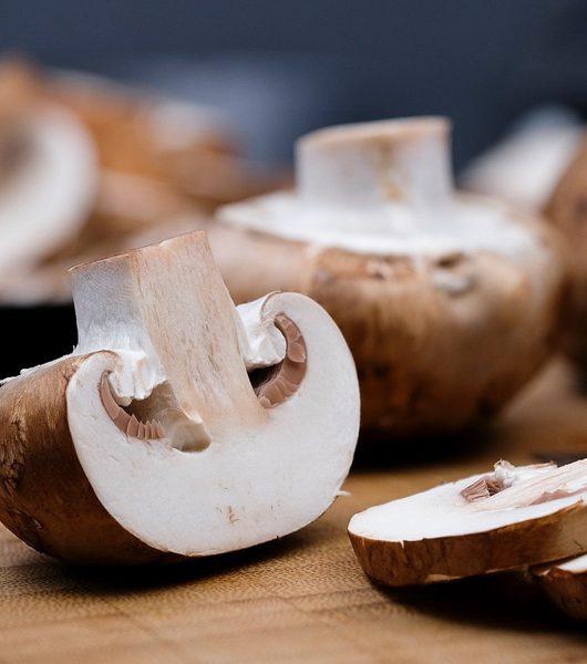 Pilze noch mal erwärmen - The Vegetarian Diaries